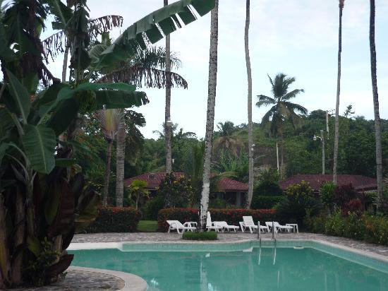 Hotel Palococo : piscina hotel