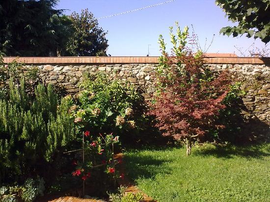 Ceraunavolta: giardino