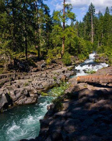 Union Creek Resort: Deschutes River near Union Cr Lodge