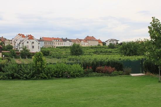 Hotel Zum Goldenen Engel: garden (with swimmingpool)