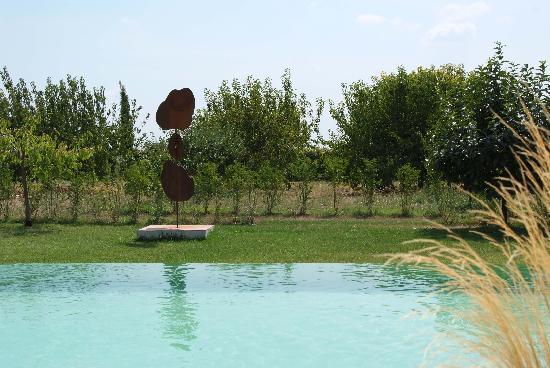 Le Pavillon de Galon : La piscine à débordement