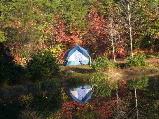Cleveland, GA: Tent on the pond at Jenny's Creek