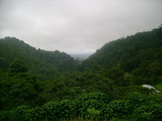 Jinotega, Nikaragua: View from the Ecolodge, overlooking the valley where Lake Parana is located