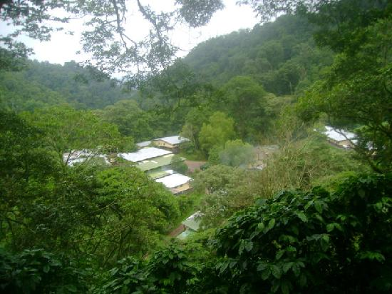 Jinotega, Nicaragua: La Bastilla Coffee Estates, view from the Ecolodge