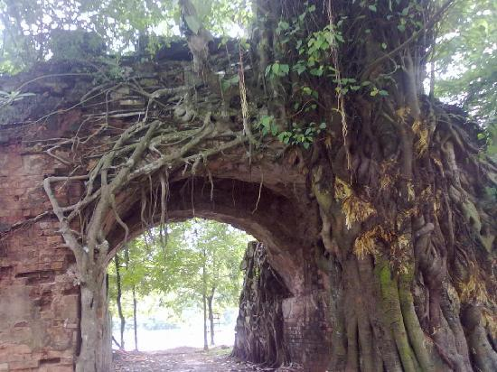 Hanoï, Vietnam : one main gate with the ancient tree