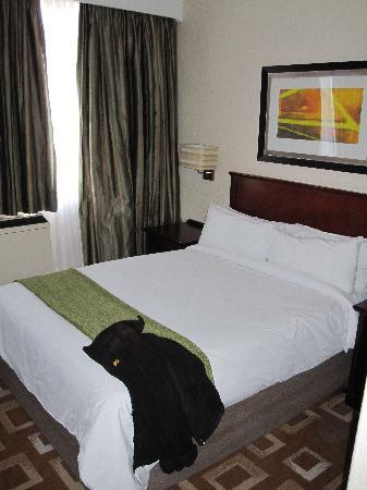 Garden Court O.R. Tambo International Airport: Bett