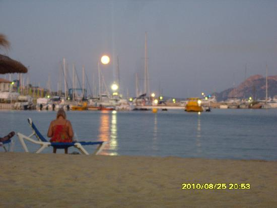 Hobby Club Apartments: moon over the Harbour porta pollensa
