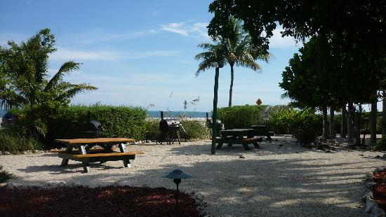 Hyatt Residence Club Key West, Windward Pointe: You may grill and dine in garden area with views of Atlantic Ocean