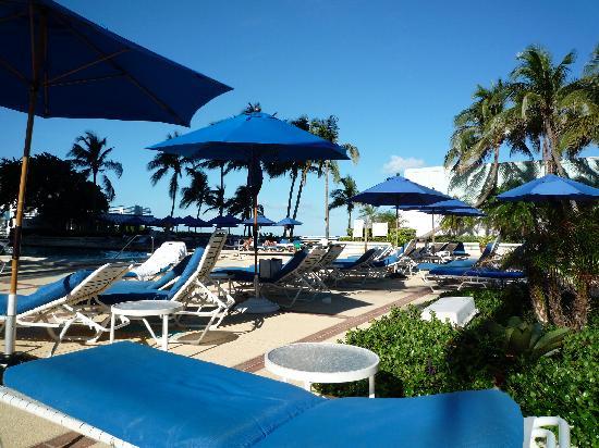 Miami Beach Resort and Spa: Super piscine