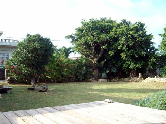 Yunapa: お庭の写真です。