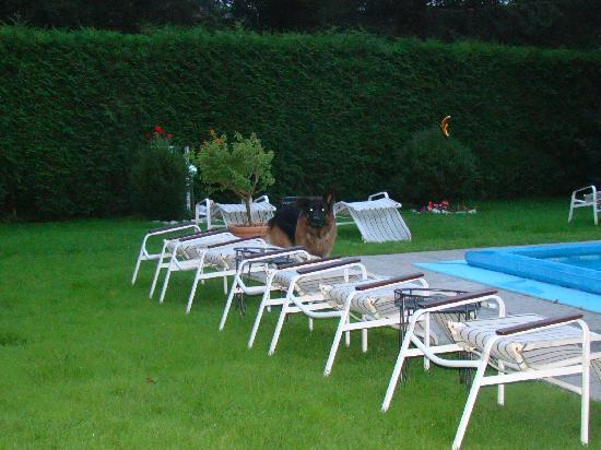 Hotel Tirolerhof: Einer der Beschützer