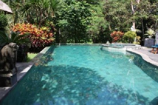 Kusuma Sari Villa & Spa: Our infinity pool