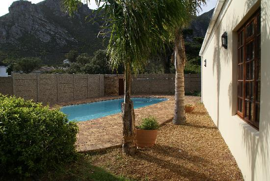 Milkwood Lodge : La piscine