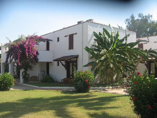 Club Kastalia: bungalows