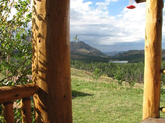 Pikes Peak Resort: View from the porch