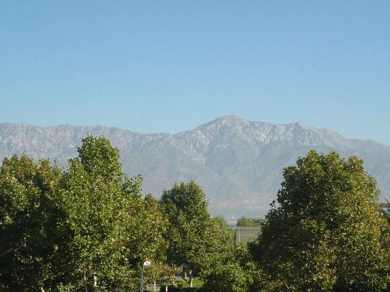 Homewood Suites by Hilton Ontario-Rancho Cucamonga: View from room
