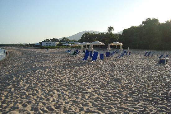 Hotel Mare Pineta : spiaggia