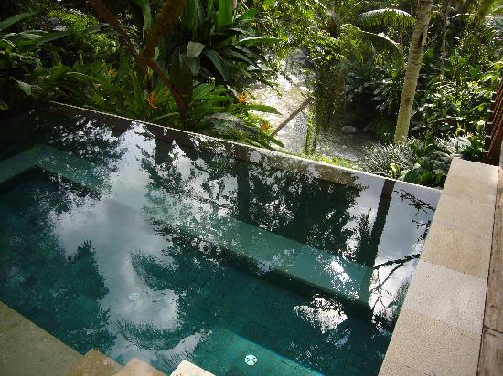 Plunge pool overlooking the river