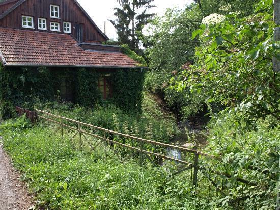 Legelbach vor dem Haus: fotografía de Landhaus Baerenmuehle ...