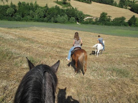 Locanda della Valle Nuova: Horse ride