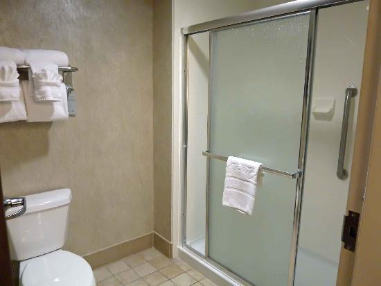 Homewood Suites by Hilton York : Handicapped bath in studio room