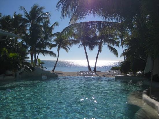 Islamorada, ฟลอริด้า: Infinity pool