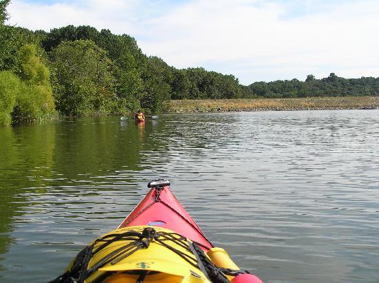 Marsh creek deals