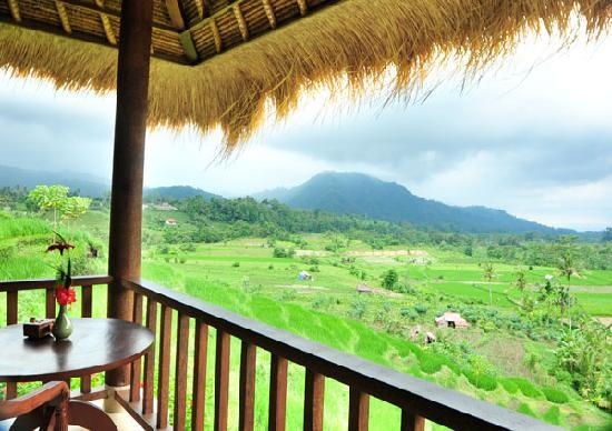Surya Shanti Villa: Vue