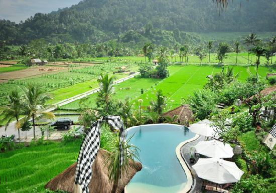 Surya Shanti Villa: Piscine