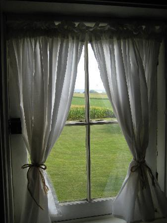 Old Summer House: View out of the window