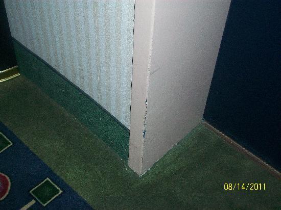 Holiday Inn Muskegon: Hallway walls