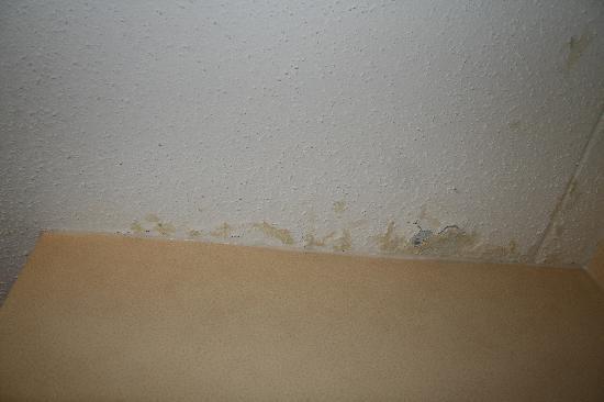 Comfort Inn & Suites Alexandria: Rotten ceiling