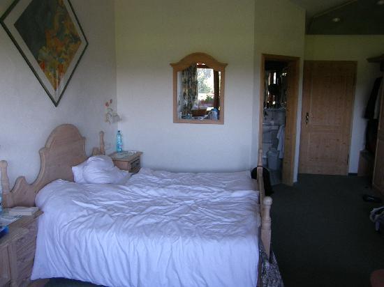 Hotel Grüner Wald: détail chambre 1