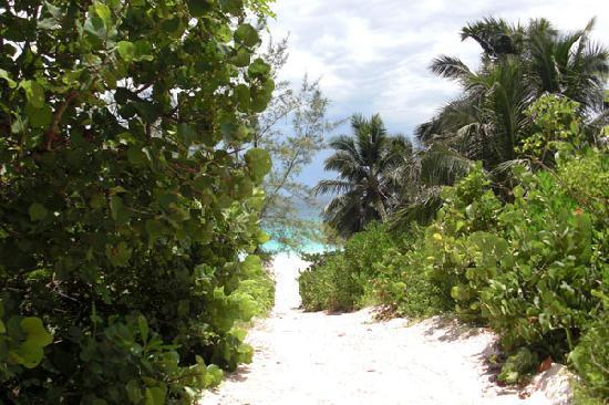 Baretta's Seashell Inn: accès à la plage