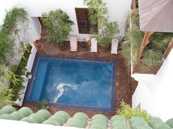 Riad l'Orangeraie: Pool from rooftop terrace