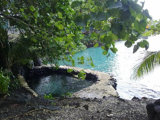 Salelologa, Samoa: great swimming