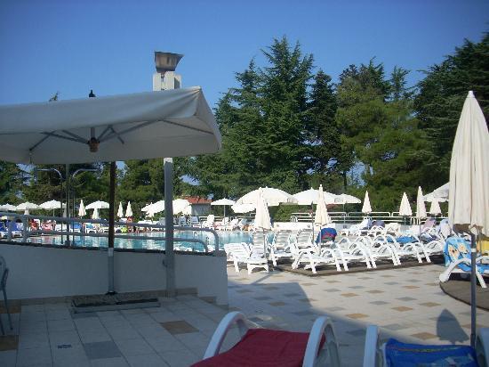 Valamar Pinia Hotel: Piscina