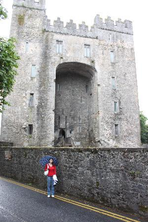 Bunratty Manor Hotel: Bunratty Castle- a minute's walk away