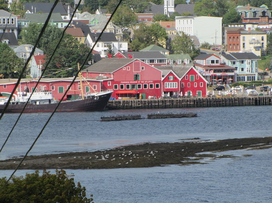 Topmast Motel: Fisheries Museum from across the harbour.