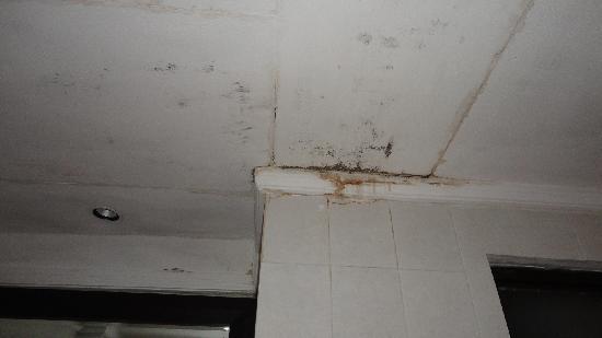 macchia di umidità in bagno - Picture of Arma Museum & Resort ...