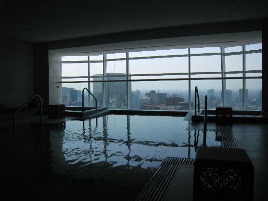 The St. Regis Mexico City: Infiniti Pool with view of Mexico City