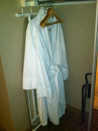 Doubletree by Hilton Hotel Birmingham: Robes