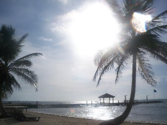 Grand Caribe Belize Resort and Condominiums: beautiful views