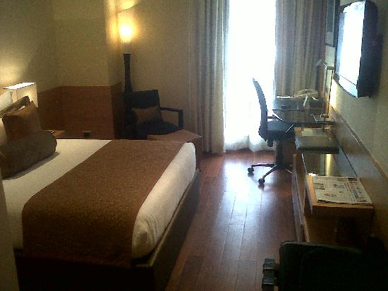 Radisson Blu Marina Connaught Place: Neat Deluxe Room