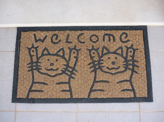 Socrates Taverna: Socrates welcome!