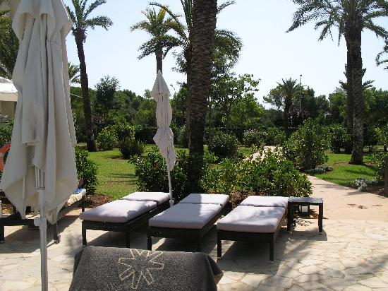 Protur Biomar Gran Hotel & Spa: piscine1 vue jardin