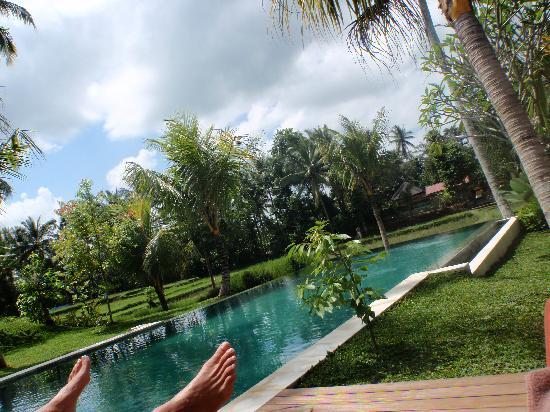 Villa Sabandari: la piscina