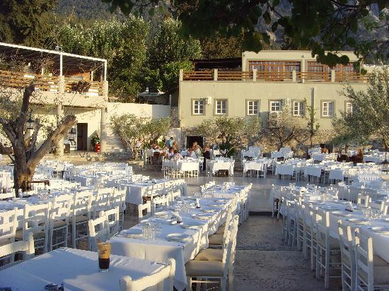 Hermes Hotel: Zia Greek night venue