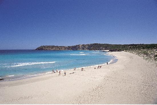 Wyspa Kangura, Australia: Pennington Bay, Kangaroo Island
