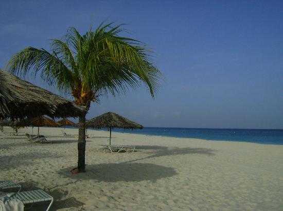 Bucuti & Tara Beach Resort Aruba: Bucuti's beach is the best!